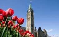 Millions of tulips to represent international peace and friendship during Canada 150