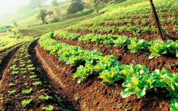 Government of Canada Provides Financial Support for Sustainable Agriculture