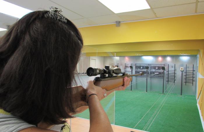 Air Gun Target Practice