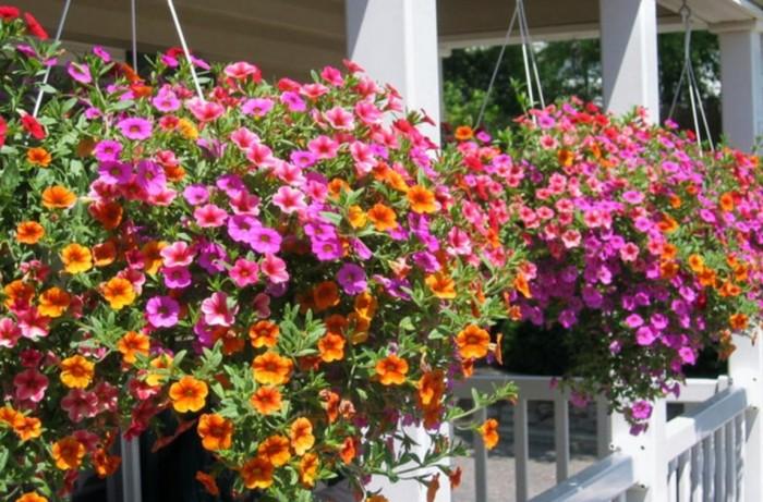 Work Force, Chris Yassa, Zac Yassa, Mother's Day , Garden, West Island Blog, WIB, Rhonda Massad