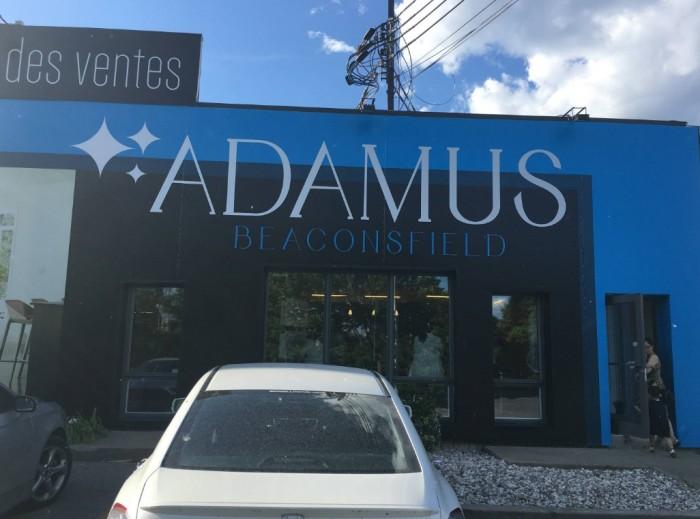 Beaconsfield, Adamus, Rhonda Massad, Elm Ave., Adamus, West Island Blog