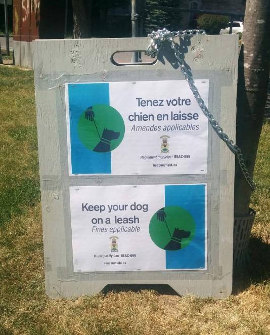 Beaconsfield, Dog Run, Angell Woods, West Island Blog, Rhonda Massad, Dogs