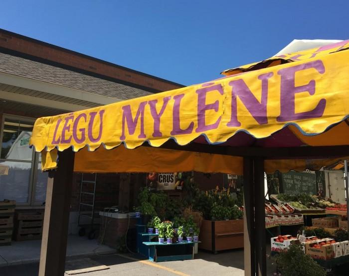 Legu Mylene, Ile Bizard, Vegetables, Fruits, West Island Blog, Rhonda Massad