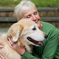 Instinctive, Animal Love, Dog, Cat, Pet Therapy,Suzanne Reisler Litwin, West island Blog, Rhonda Massad, Companions, Elderly