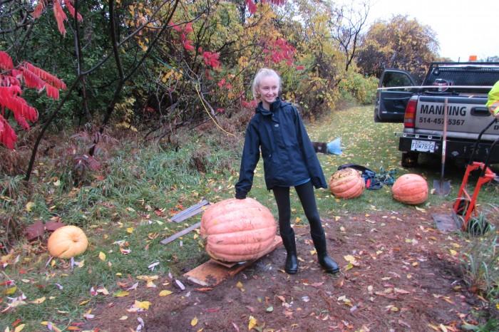 Pumpkin contest Baie D'Urfé