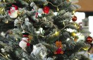 Christmas tree pick-up around the West-Island 2017