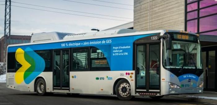 STM bus, Rhonda Massad