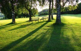 Pointe-Claire Neighbourhood Park Naming Contest
