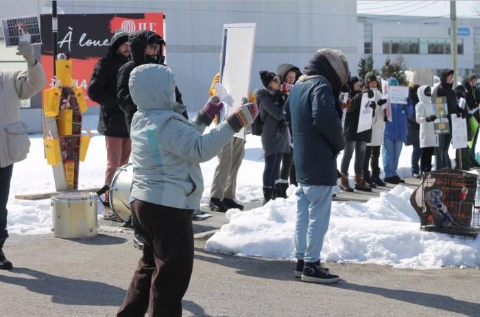 Sarena Miller, Rhonda Massad, Animal Protest Baie D'Urfé