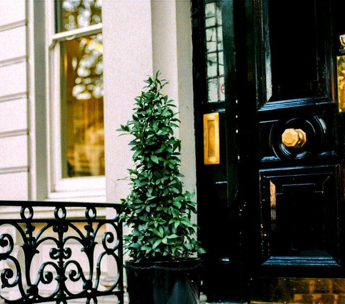 Candis Noble Real Estate Broker Engel & Völkers