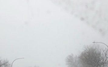 Montreal snowfall 2019