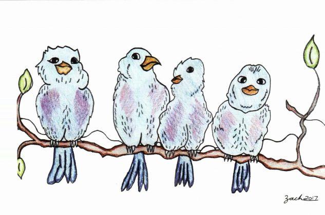 Zach_Designs_Four_birds_on_a_branch_Card_Design