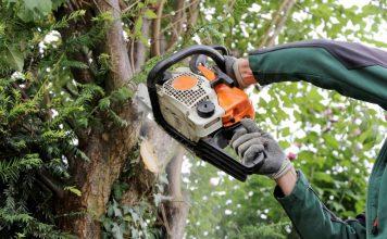 Senneville-tree-financial-assistance-tree-felling